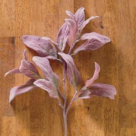 "Brown Lamb's Ear 31"" Leaf Sprays, Set of"