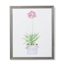 "35"" Cachepot Aloe Giclée Print IV from the"