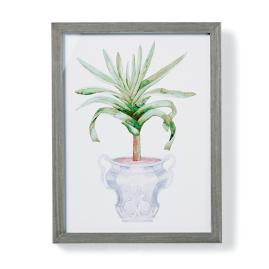 "19"" Cachepot Aloe Giclée Print VIII from the"