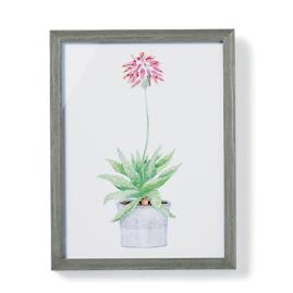 "19"" Cachepot Aloe Giclée Print V from the"