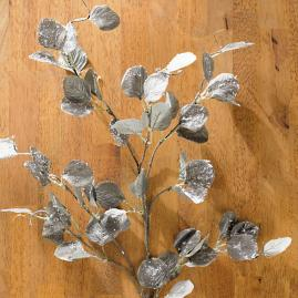 "Snowy Eucalyptus 38"" Stems Set of 12"