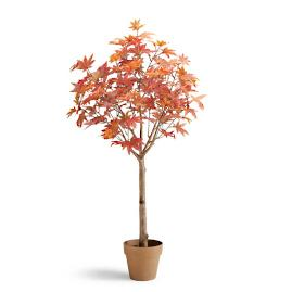 "Maple Leaf 48"" Potted Plant"