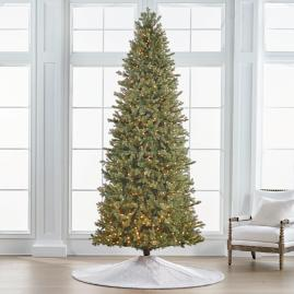 Douglas Fir 10' Slim Profile Tree