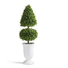 "Boxwood 30"" Two-layer Topiary"