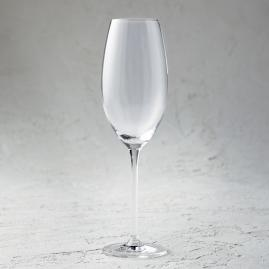 Schott Zwiesel Note Sparkling Wine Glasses, Set of