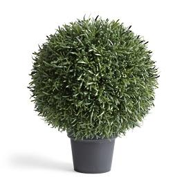 "20"" Outdoor Rosemary Ball Topiary"