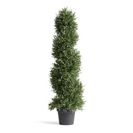 "36"" Outdoor Rosemary Spiral Topiary"