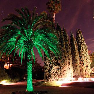 Outdoor Landscape Light