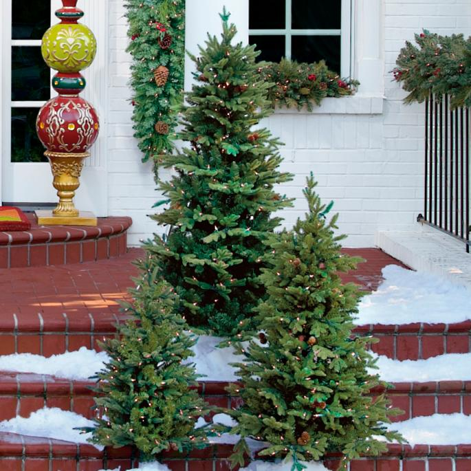3 ft hyde park pathway trees set of two - 3 Ft Christmas Tree