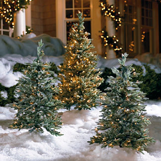 Set of Two 3' Frosted Alpine Pathway Trees