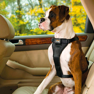 Tru-Fit Smart Harness with Seat Belt Loop