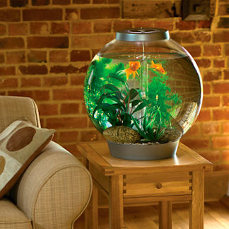 BiOrb 8-gallon Aquarium