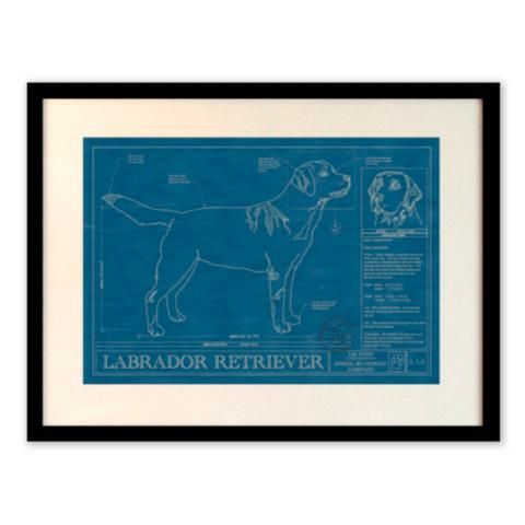 Dog breed blueprints frontgate dog breed blueprints malvernweather Gallery