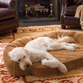 Performance Memory Foam Pet Bed