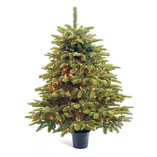 Tabletop Grand Noble Christmas Tree