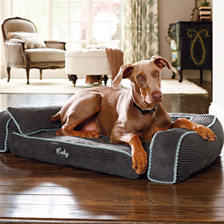Dynamic Air Flex Pet Bed