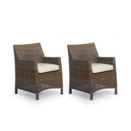 Hyde Park Set of Two Dining Arm Chairs