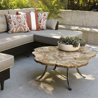 Petrified Wood Coffee Table Frontgate