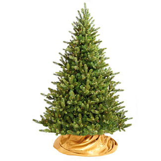 Signature Balsam Fir Christmas Tree with Traditional Stand