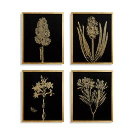 Gilded Silkscreen Botanical Prints on Black from the
