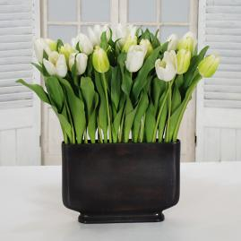 Tulip Mix in Profile Case