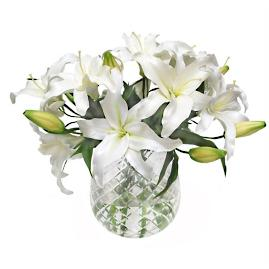 Lily Casablanca in Diamond Cust Vase