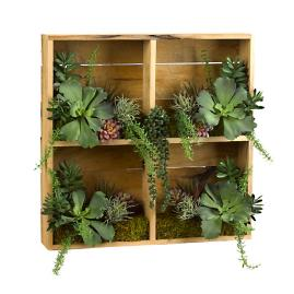 Greenery and Succulents in Wooden Shadow Box