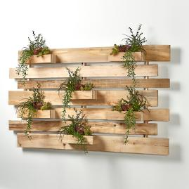 Assorted Succulents Wall Slats in Natural Wood