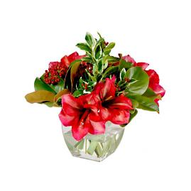 "14"" Red Amaryllis and Magnolia in Clear Vase"