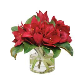 "15"" Red Amaryllis in a Glass Vase"