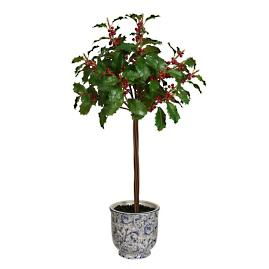 "28"" Holly Tree in a Ceramic Pot"