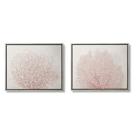 Coral Impressions Giclées, Set of Two
