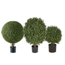 "33"" Single Ball Outdoor Boxwood Topiary"