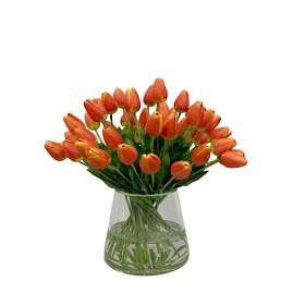 Orange Tulip in Vase