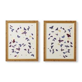 Floating Butterflies Giclée Prints
