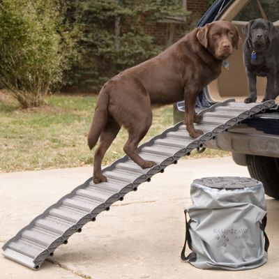 Roll Up Dog Ramp Frontgate